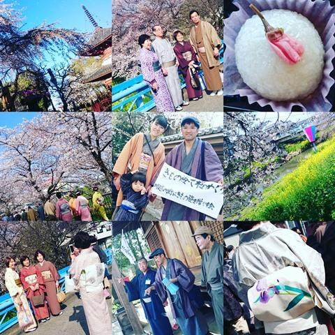 きもの姿で仙波の桜めぐり 川越の街にきもの姿を増やす会