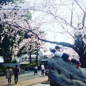 県立近代美術館 北浦和公園
