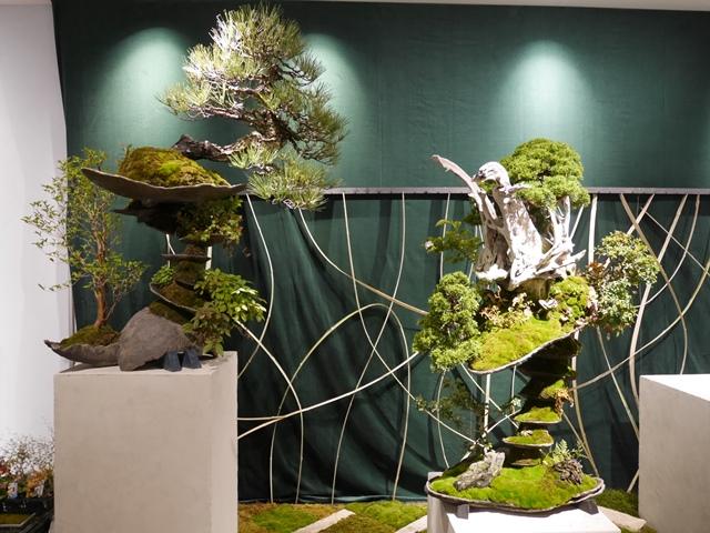 大盆栽まつり おおみや盆栽春まつり 平尾成志 まるまるひがしにほん 東日本連携センター