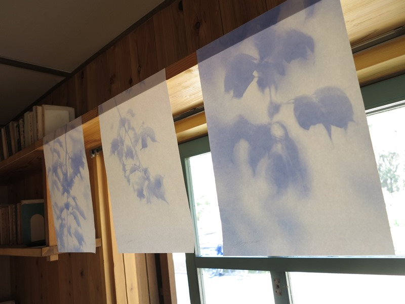 現在の青図 記憶の窓 ヒアシンスハウス さいたま国際芸術祭 美術と街巡り浦和