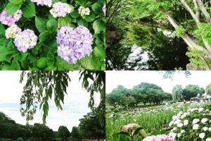上尾 丸山公園