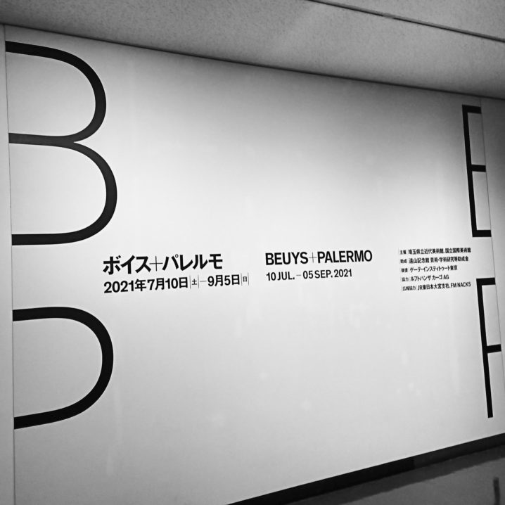 ボイス+パレルモ  埼玉県立近代美術館 ヨーゼフ・ボイス ブリンキー・ パレルモ